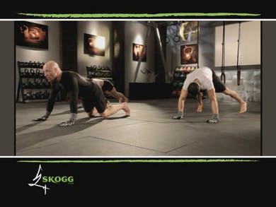 Skogg System DVD. Flow. Full Body. Conditioning. Advanced. Single KB by Skogg Gym