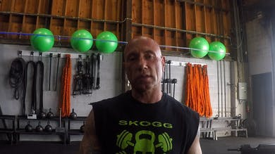 Shoulders and Arms. Strength. Medium intensity. CrossCore/TRX/Jungle Gym and pair of light kettlebells or dumbells by Skogg Gym
