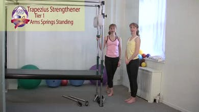 Trapezius Strengthener by Pilates on Fifth