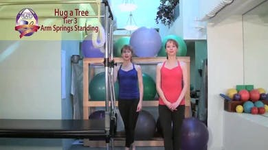 Hug a Tree by Pilates on Fifth