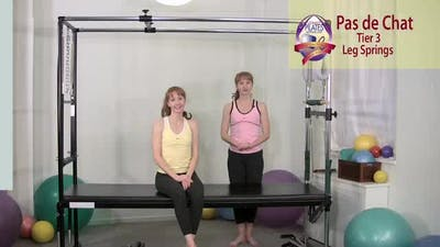 Instant Access to Pas de Chat by Pilates on Fifth, powered by Intelivideo