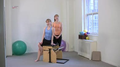 Cat Kneeling by Pilates on Fifth