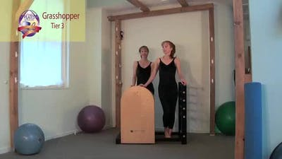 Grasshopper on the Ladder Barrel by Pilates on Fifth