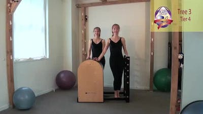Instant Access to Tree 3 on the Ladder Barrel by Pilates on Fifth, powered by Intelivideo