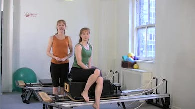 Doggiebesque by Pilates on Fifth