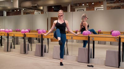 Instant Access to Swan Lake Sculpt by The Ballet Physique, powered by Intelivideo