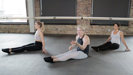 Instant Access to Floor Series 1 - Thighs, Booty, and Core Galore! by The Barre Code, powered by Intelivideo