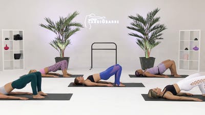 Instant Access to Inner Thighs - Beginner with Courtney by CARDIO BARRE, powered by Intelivideo