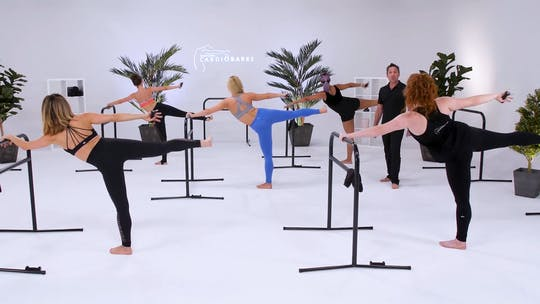 All by CARDIO BARRE