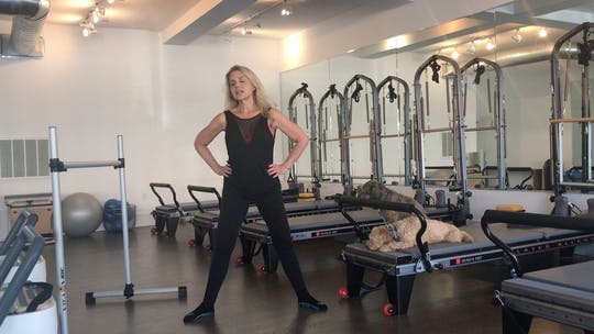 Instant Access to Barre Mentoring - Safety & Set Up Cues Series Part One by Pilates to Go with Zayna Gold, powered by Intelivideo