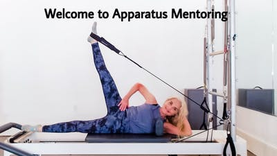 Welcome to Apparatus Mentoring by Zayna Gold Online