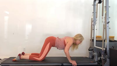 Barre All Fours Upper & Lower by Zayna Gold Online