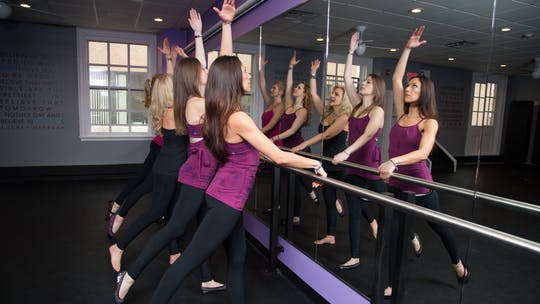 Barre Workouts by Zayna Gold Online
