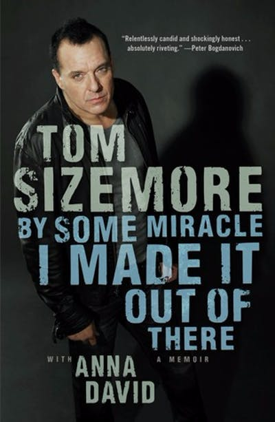 Anna's Tom Sizemore Biography Book Proposal by All the Write Moves