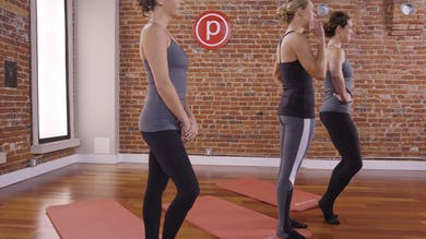 Flex Series 2: Tone in 10: Full Body by Pure Barre On Demand