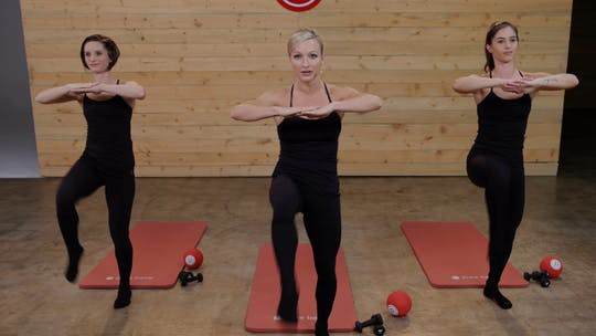 Instant Access to Sculpted Arms #1 by Pure Barre On Demand, powered by Intelivideo