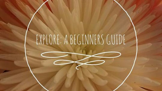 K10Yoga Stream: Beginners Series by K10Yoga, powered by Intelivideo