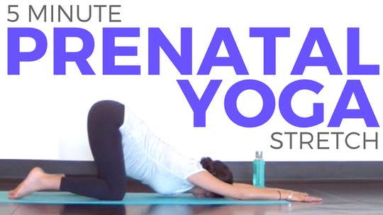 Instant Access to 5 minute Quick Prenatal Yoga Stretch by Sarah Beth Yoga, powered by Intelivideo