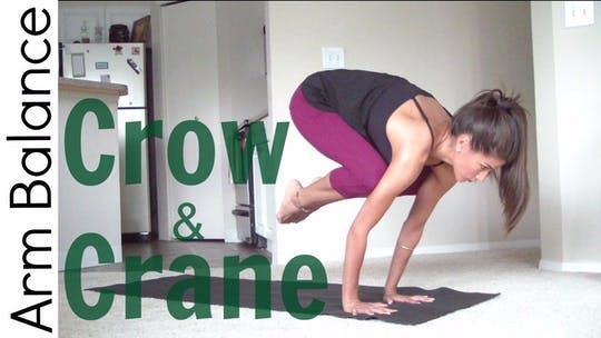 Instant Access to How to Crow Pose - Arm Balance by Sarah Beth Yoga, powered by Intelivideo