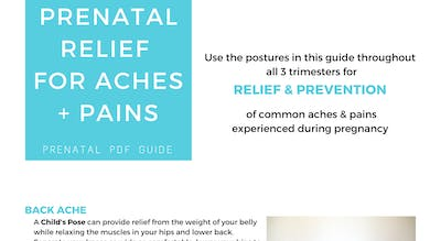 Prenatal Program - Prenatal Relief by Sarah Beth Yoga