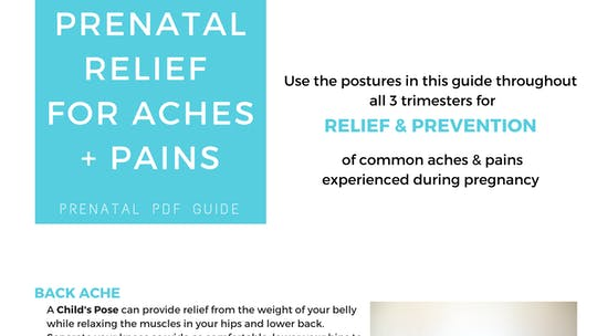 Instant Access to Prenatal Program - Prenatal Relief by Sarah Beth Yoga, powered by Intelivideo