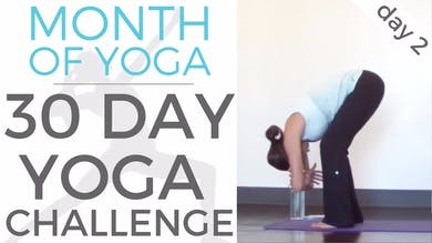Day 2 - Tapas // #MonthOfYoga - 30 Day Yoga Challenge by Sarah Beth Yoga