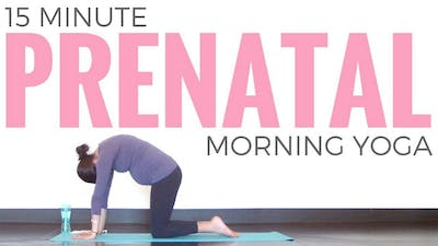 Instant Access to Prenatal Morning Yoga Routine by Sarah Beth Yoga, powered by Intelivideo