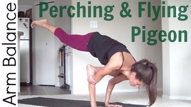 How to Flying Pigeon Pose - Arm Balance by Sarah Beth Yoga