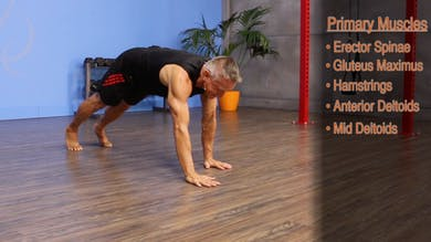 Pilates Push-Up - Anatomy and Biomechanics by John Garey TV