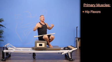 Short Box Series- Twist with Round Back - Anatomy and Biomechanics by John Garey TV