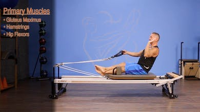Back Rowing - Straight Back - Anatomy and Biomechanics by John Garey TV