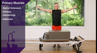 Long Box Arms Pulling Straps 2 - Airplane - Anatomy and Biomechanics by John Garey TV