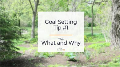 Goal Setting Tip 1 by John Garey TV