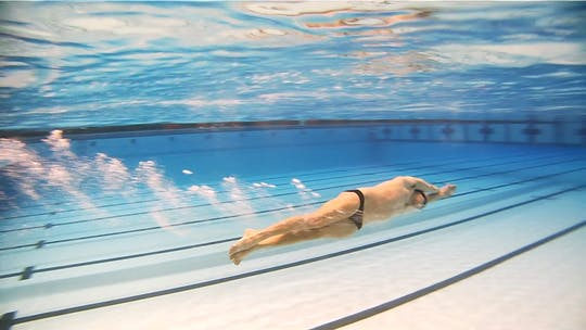 Instant Access to Glide Drill for Flip Turns: Clark Smith by Fitter and Faster Swim Tour, powered by Intelivideo