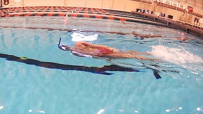 Instant Access to Freestyle Kick and Rotate: Chloe Sutton by Fitter and Faster Swim Tour, powered by Intelivideo