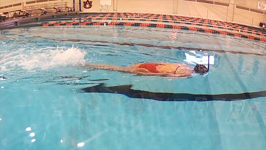 Instant Access to Freestyle Kick Arms Down: Chloe Sutton by Fitter and Faster Swim Tour, powered by Intelivideo