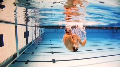 Floating Flip Turn: Nick Thoman by Fitter and Faster Swim Tour