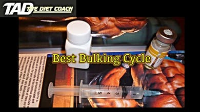 Best Bulking Cycle by TadTV