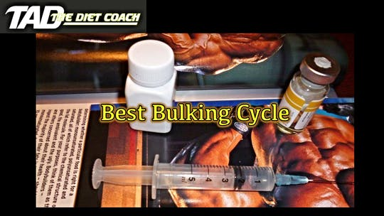 Instant Access to Best Bulking Cycle by TadTV, powered by Intelivideo