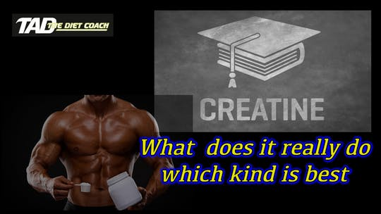 Instant Access to Creatine by TadTV, powered by Intelivideo