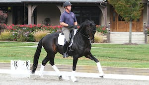 Scott Hassler Interview, USEF Young Horse Coach by Dressage Today Online