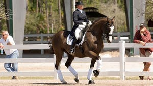 Instant Access to Nancy Pugh-Later works on downward transitions and schooling the pirouettes by Dressage Today Online, powered by Intelivideo