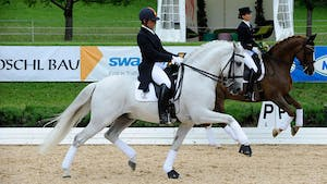 Juan Manuel Munoz Diaz - PSG Skills by Dressage Today Online