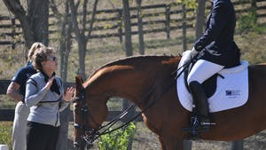 Instant Access to Janet Foy - Intermediate 1, geometry, canter zig zag by Dressage Today Online, powered by Intelivideo