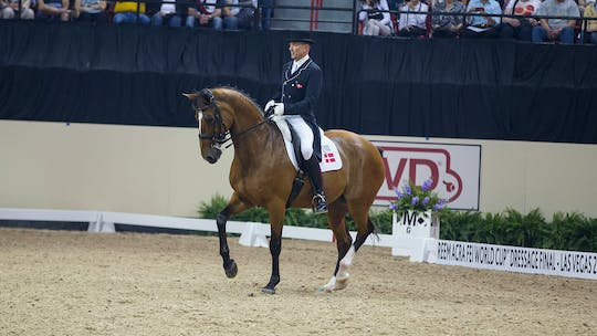 Junior Rider Third Level by Lars Petersen by Dressage Today Online, powered by Intelivideo