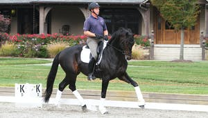 USDF Sport Horse Prospect Development Forum - How to Relax the Topline by Scott Hassler by Dressage Today Online