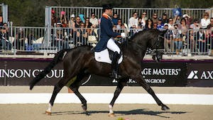 Small Aids, Counter Canter, Changes by Laurens van Lieren by Dressage Today Online