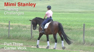 Instant Access to Mimi Stanley - Training Challenges, Part 3 by Dressage Today Online, powered by Intelivideo