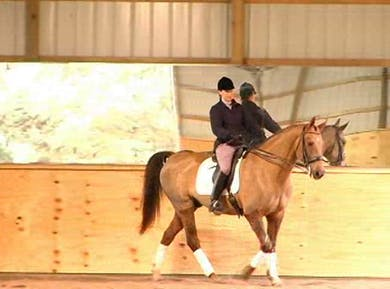 1/2 steps and 1/2 pass by Dressage Today Online