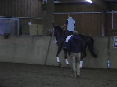 Pirouettes and changes by Dressage Today Online